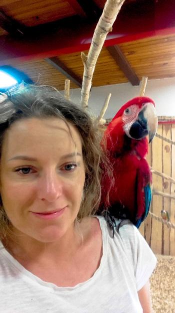 Papugarnia papugi oborniki papugarniaendriu zoo zwierzeta w dolnośląskim angellovesdreams